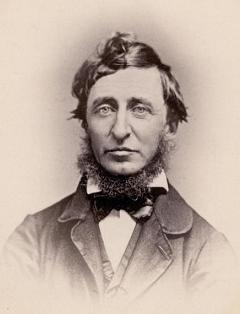 common portrait of Henry David Thoreau [1817-62] in sepia