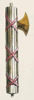 the 'fasces' is a bundle of rods in combination with a war axe